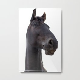 Black Horse Portrait Metal Print