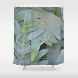 TEXTURES -- Ferns Enfolded Shower Curtain