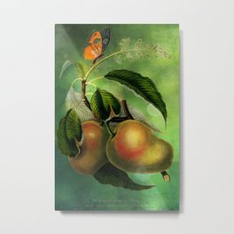 Bombay Mangos with Butterfly, Vintage Botanical Illustration Collage Art Metal Print