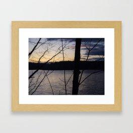 Trees at Dusk Framed Art Print
