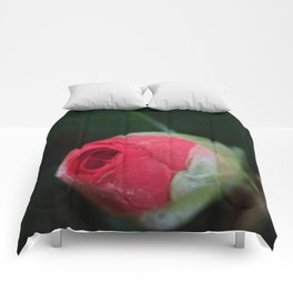 Blooming cameilla bud Comforters