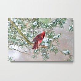 Snow Day Cardinal Metal Print