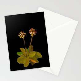 Saxifragia Nivalis Mary Delany Floral Paper Collage Delicate Vintage Flowers Stationery Cards