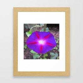 Shines on YOU Framed Art Print