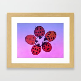 Sunset ladybug circle Framed Art Print