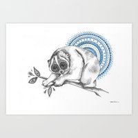 slow loris Art Print