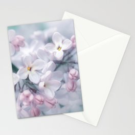 Spring 0120 Stationery Cards