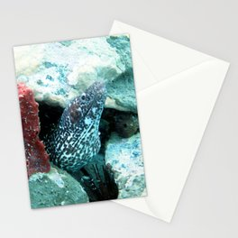Watercolor Sealife Spotted Moray Eel 01, I Don't Bite... Stationery Cards