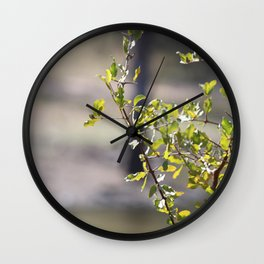 Sunny green African tree Wall Clock