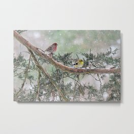 Two Finches in a Snowstorm Metal Print