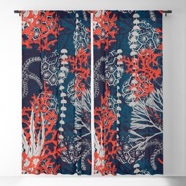 Corals and Starfish Blackout Curtain