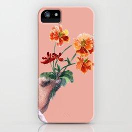 Daisies 2 iPhone Case
