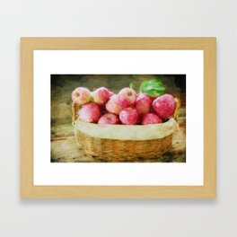 Apple Harvest Framed Art Print