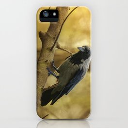 Crow on the branch iPhone Case