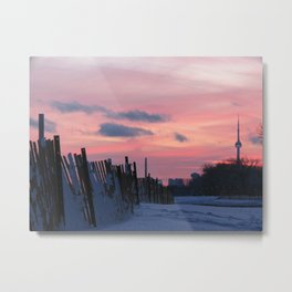 snowfence Metal Print