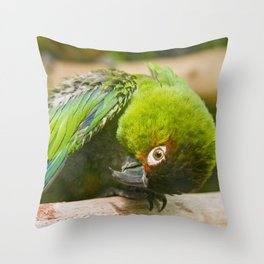 Green Parakeet Throw Pillow