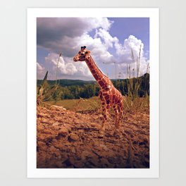 Appalachian Wonderland No. 3 - Safari Art Print