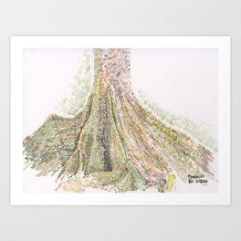 Buttress Tree Art Print
