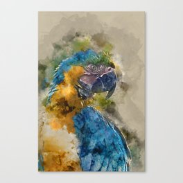 Parrot Colours Canvas Print