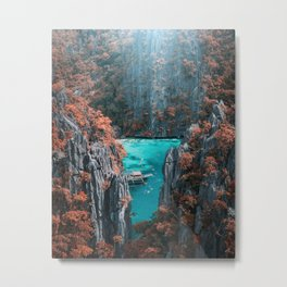 Fall in the Philippines ( just kidding!) Metal Print
