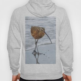 Long Billed Curlew Hoody