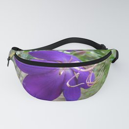 Purple Tibouchina Princess Flower Closeup Fanny Pack