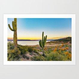 Desert II Art Print