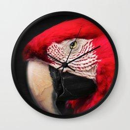 scarlet macaw - ara macao Wall Clock