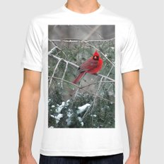 Winter Cardinal Mens Fitted Tee White MEDIUM