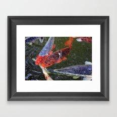 Fishey Framed Art Print