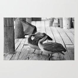 Juvenile Brown Pelican Tale 3 Rug