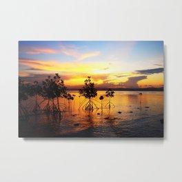 The Mangroves Metal Print