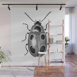 Beetle 18 Wall Mural