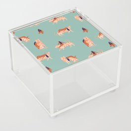 Tigers and girls Acrylic Box