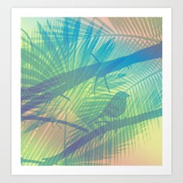 Palm bird Kunstdrucke