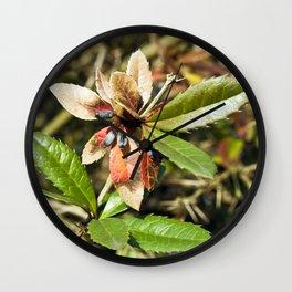 MAGIC COLOURS - SPRING  Wall Clock