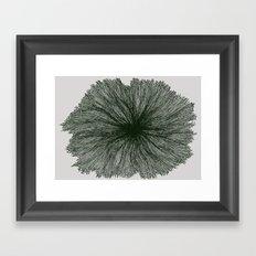 Jellyfish Flower B Framed Art Print