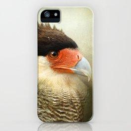 Portrait of a Caracara iPhone Case