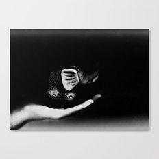 Practicing levitation Canvas Print