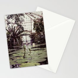 Lillypads with blooms Stationery Cards