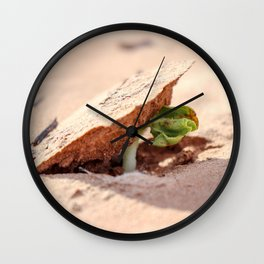 Sprouting cotton Wall Clock