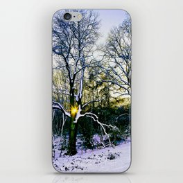 Winter Sunlight iPhone Skin