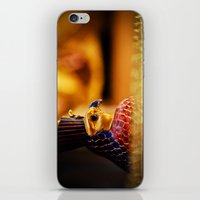 egypt iPhone & iPod Skins featuring Egypt by Marcus Meisler