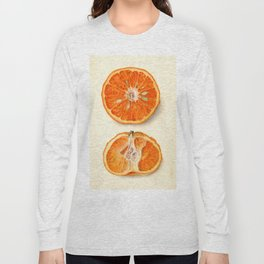 Vintage Painting of Tangerines Long Sleeve T-shirt