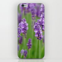 lavender iPhone & iPod Skins featuring lavender by GISMANA