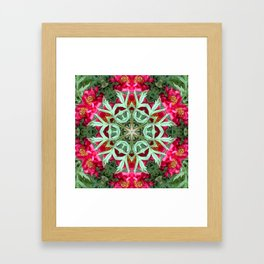 Peony Rose Florii Framed Art Print