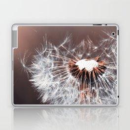 Dandelion Flower Laptop & iPad Skin