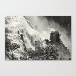 Strength against the waterfall Canvas Print