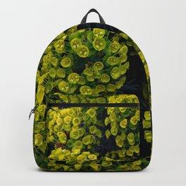 Euphoric Euphorbia Backpack