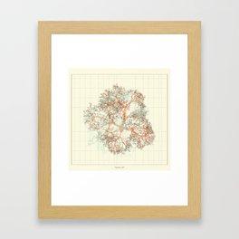 Arbor Ludi: Petrosian Framed Art Print